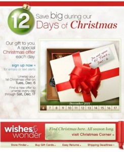 Belk 12 Days of Christmas email